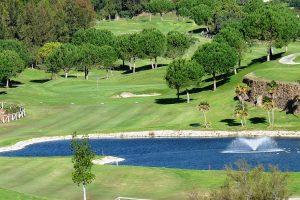 golf-IM6